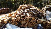 Ofenfertiges Hartholz Mischholz zugeschnitten