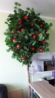 Kunst Apfelbaum