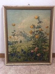 Gemälde Gebirgsblumen von Max Märtens