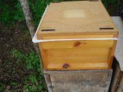 Bienenvölker Carnica